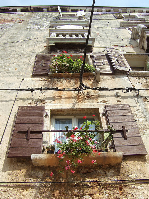 ysvoice:  | ♕ |  Windows in Rovinj - Croatia  | by © Odhran