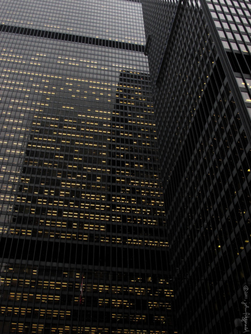 TD Centre by john fitzgerald in toronto on Flickr.