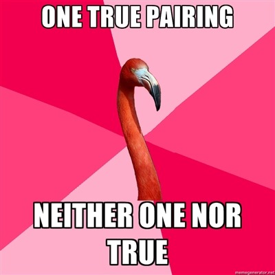 fuckyeahfanficflamingo:  [ONE TRUE PAIRING (Fanfic Flamingo) NEITHER ONE NOR TRUE] I thought they were my OTP, but turns out I actually ship these characters with a lot of people…  This is one of mine :D