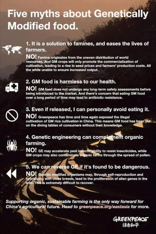 stopkillingourworld:  5 Myths about Genetically Modified food.