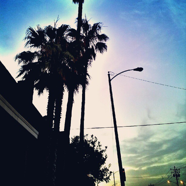 Rise & Shine West Coast #sunrise #westcoast #work #California #losangeles #PalmTrees  (Taken with Instagram)