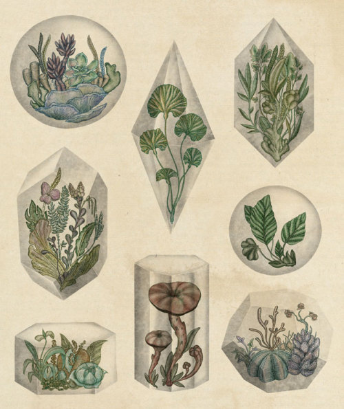 terramantra:  Floating Terraniums, Katie Scott