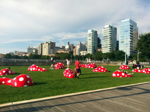 To mark Yayoi Kusama's retrospective at the Whitney, we've collaborated with the Hudson River Park Trust and Gagosian Gallery to present a special art project near the Whitney's future home in the Meatpacking District. Visitors to Pier 45 can enjoy Kusama's playful and endearing multi-part installation Guidepost to the New Space (2004) throughout the summer.