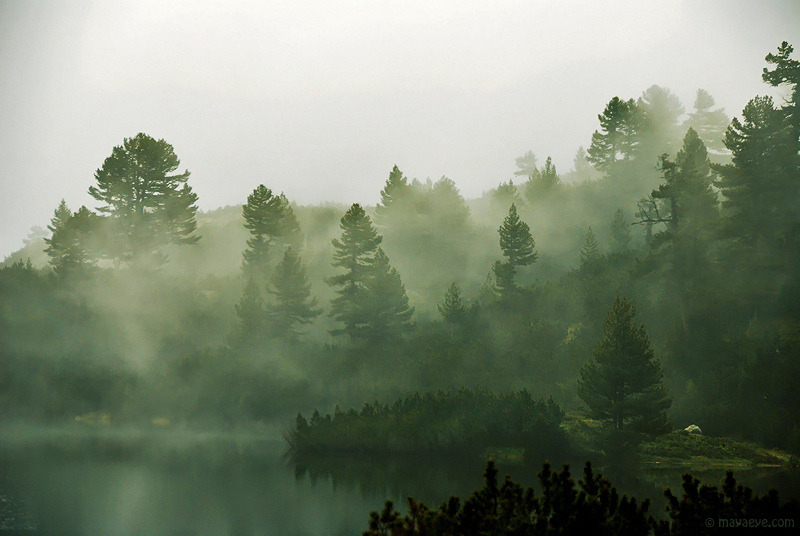 ipsloum:  Mystic morning at the Pirin lakes (by .:: Maya ::.)