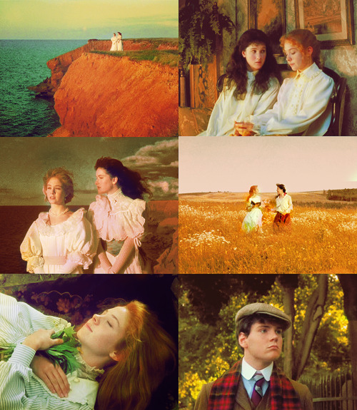 hayworths asked for: Anne of Green Gables | Orange