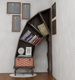 Disaster Bookshelf by Victor Barish.