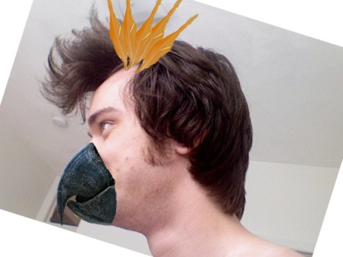 How Much Does Martin Look Like A Cockatoo Today? Ca-caawww! Brought to you by GradLife 2012: The Pantsless Summer.