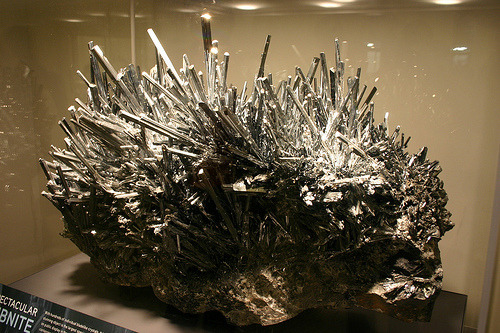 "crownedrose:  Stibnite is an awesome mineral, but also one that can be potentially toxic, so it must be handled with care (and always wash your hands!). It's an antimony sulphide, Sb2S3, and also a soft mineral that comes in with only a 2.0 on the Mohs hardness scale. The specimen above is called ""Spectacular Stibnite"", and the largest specimen ever displayed, and very rare due to its size/crystal structures. It's also 1,000 pounds and originally from a Chinese mine. This brilliant mineral was created around 130 millions years ago when antimony and sulphur were dissolved in water heated by volcanic activity, and then deposited between layers of limestone. For those beautiful crystals to grow so large, it would have been deposited in a pocket at one point, which is very lucky it was found and not destroyed while workers were in the mine. It is on display at the American Museum of Natural History, New York, NY.Photo credit: Ryan Somma on Flickr"
