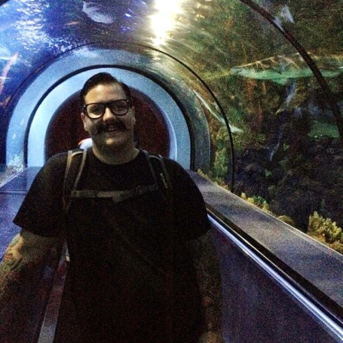Shark tunnel!  (Taken with Instagram at Shark Encounter)