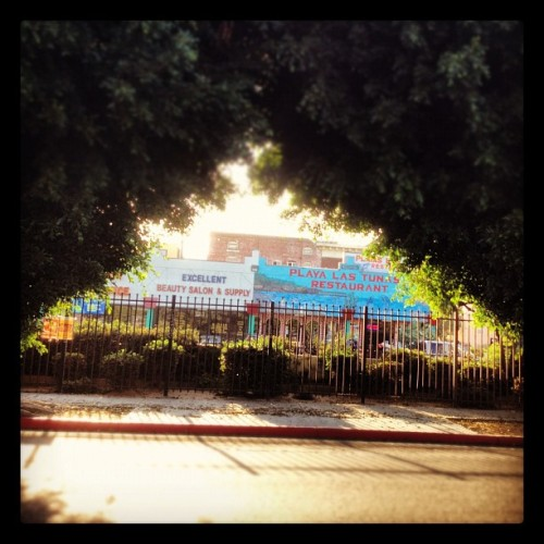 Los Angeles #hefe (Taken with Instagram)