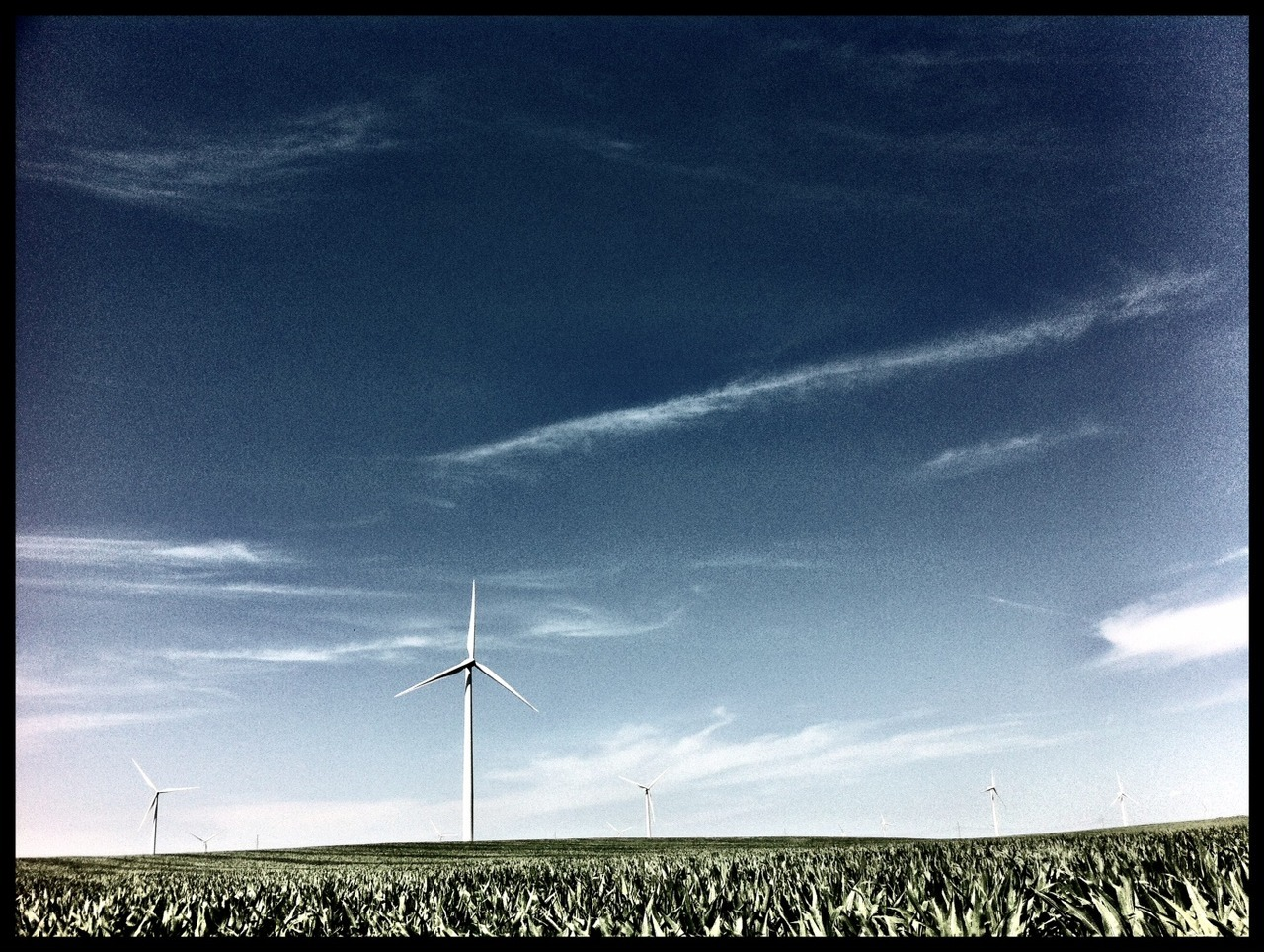 wind farm near Elkton, SD