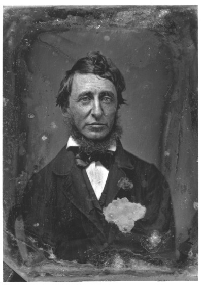 collectedheroes:  Happy Birthday Henry David Thoreau!