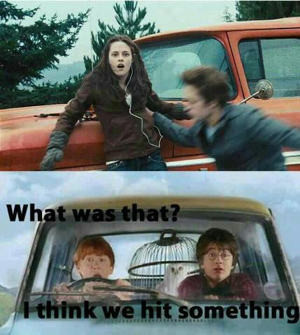 beingapotterheadisawesome:  I love you Ron.