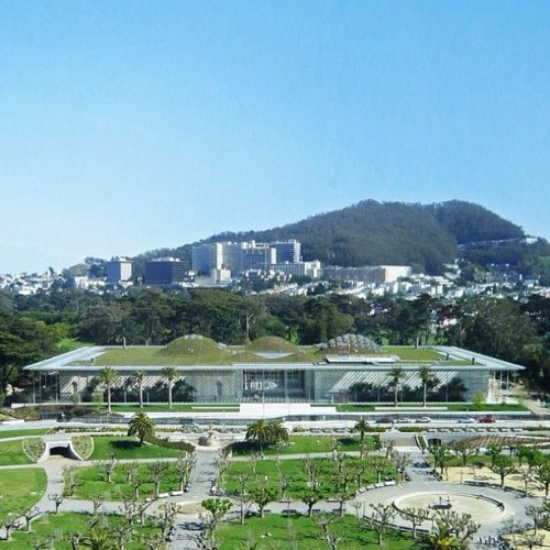 #California Academy of Science by #RenzoPiano #architecture #sanfrancisco #archdaily #instagood #iphonesia (Taken with Instagram)