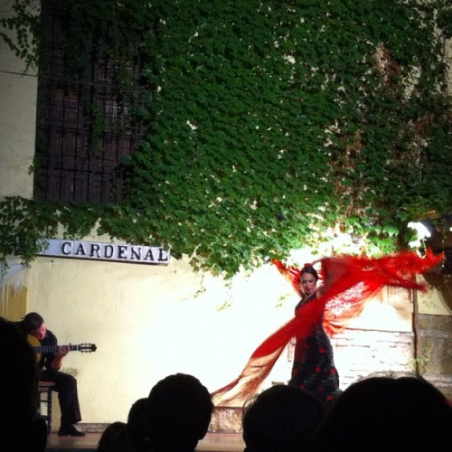 Flamenco! (Taken with Instagram)