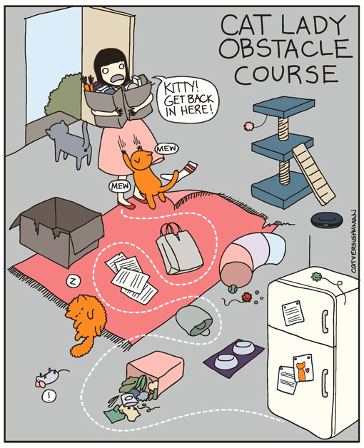 laughingsquid:  Cat Lady Obstacle Course