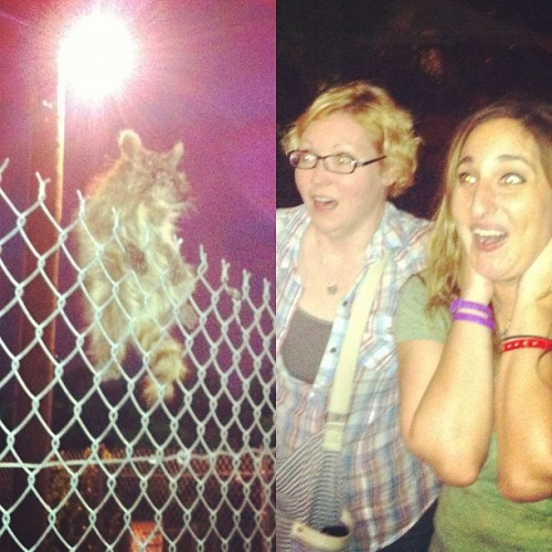 BEX AND LINDSAY AND I SAW A BABY RABID RACCOON AHHHH (Taken with Instagram at Brooklyn Bridge Park)