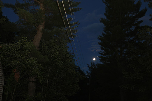 Gilmanton, NH (power line #1)
