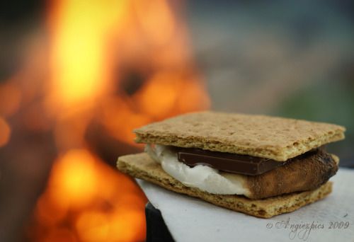 Nothin' says summer like s'mores by the fire (by Angiezpics)