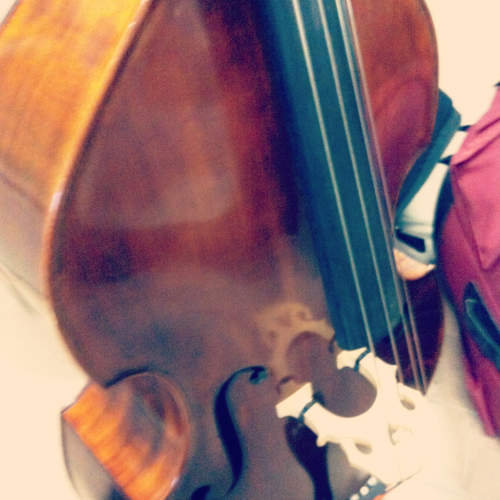 tkgsbassists:  My bass :D ~