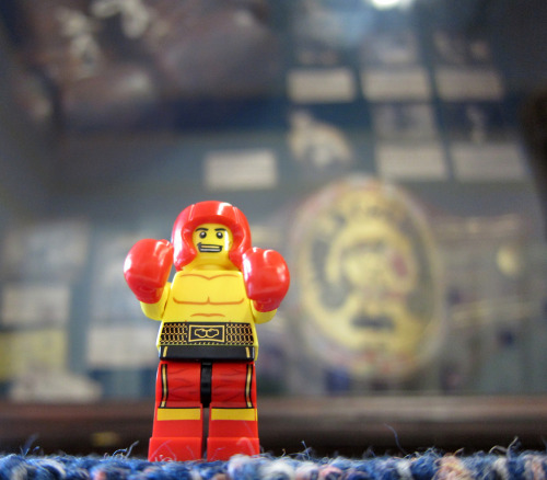LEGO Collectible Minifigures Series 5 : Boxer Image by Chris Christian