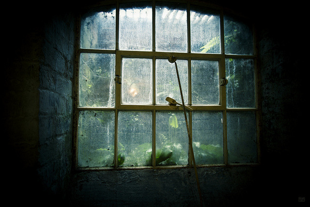 kungfuqua:  Window #2 by *will~les~photo* on Flickr.