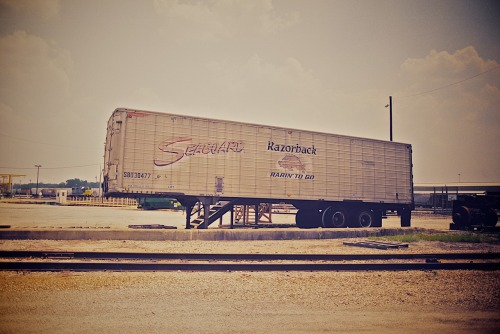 "A relic from the past. An old Seaboard Air Line trailer, even with the ""Razorback - Rarin' To Go"" logo pretty much intact. A very rare artifact at CSX's Tilford Yard in Atlanta. Taken on Dad's last day of work, July 1st, 2012. Shot with my Pentax K1000, using Fuji Pro 400H."