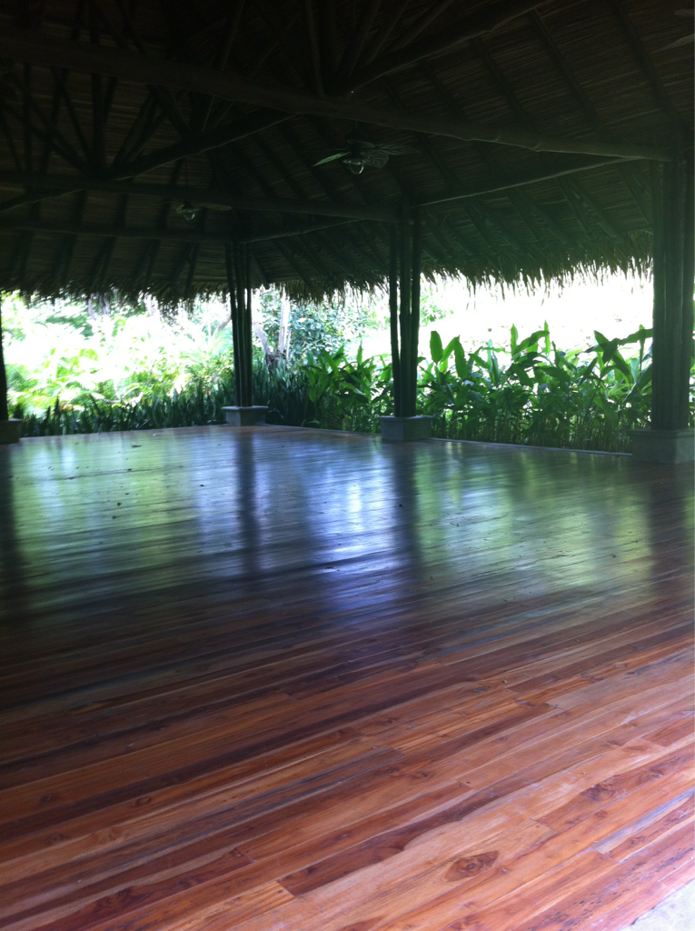 Nature studio.  #bluespiritcostarica #meditation