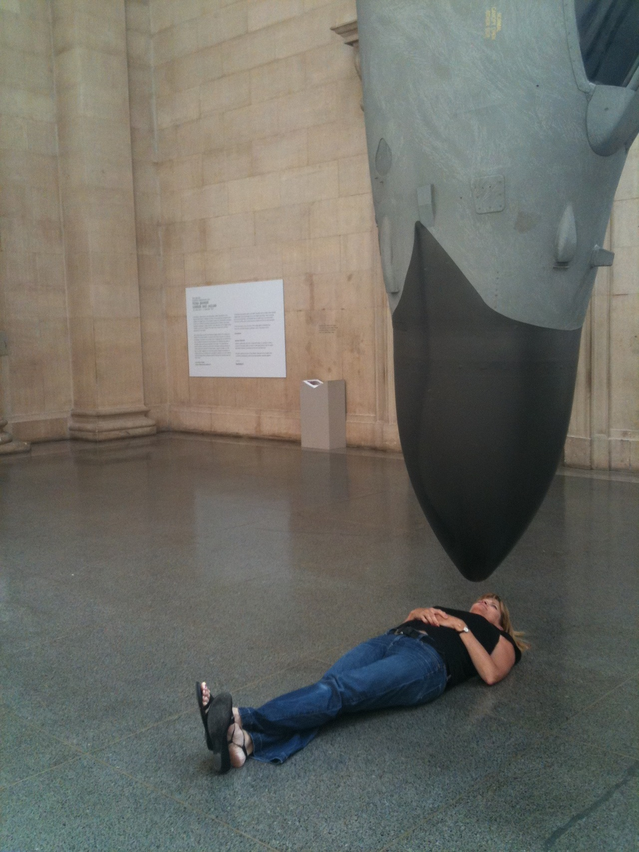 Harrier and Tourist, Fiona Banner at Tate Modern
