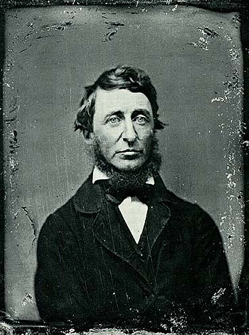 House of Cancer. Henry David Thoreau.  laphamsquarterly:  Happy Birthday , you delightful curmudgeon!