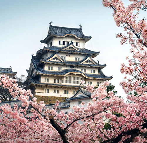 travelingcolors:  Himeji Castle | Japan (by =heeeeman)