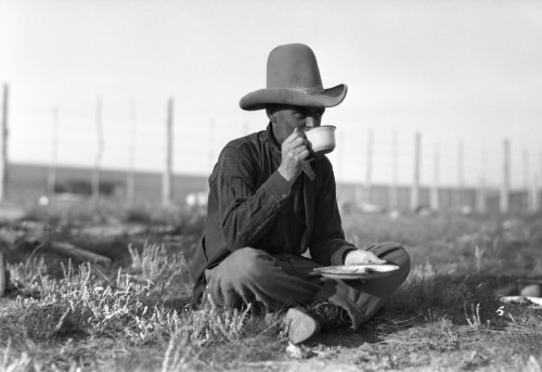 Cowboy having coffee during cattle round-up drive, 1926