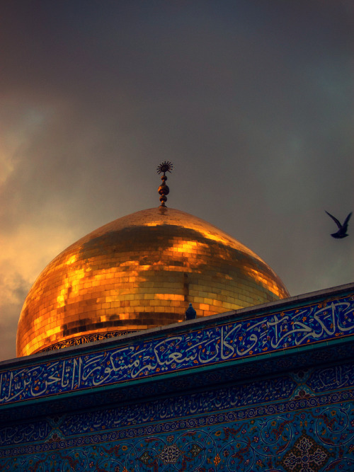 realfakescientist:  the shrine of Sayida Zainab, the daughter of Imam Ali (as), in Syria.