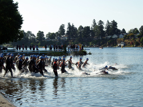 And they're off! Men's 40+ age group wave start for the Half at Rev3 Portland. July 8, 2012
