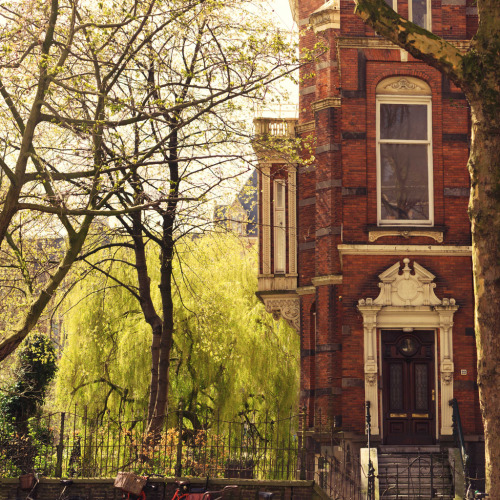 allthingseurope:  Amsterdam (by joeribosma)  Breez, this stoop is calling our names…