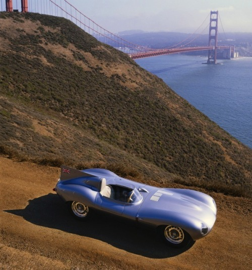 timewastingmachine:  1955 Jaguar D-type
