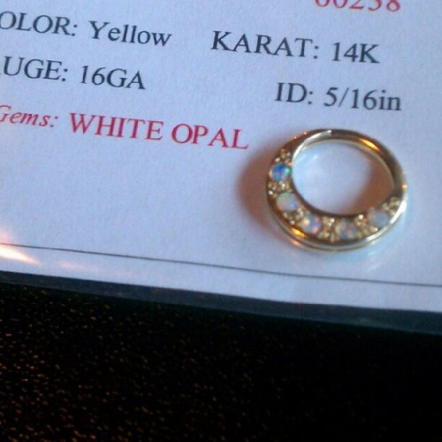 Another new septum ring! 14k Yellow Gold with White Opals! Call us for pricing and ordering information! 865-951-1486 [Born This Way Body Arts - Knoxville, TN]
