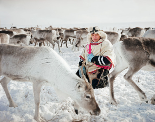 ironvalkyria:  Sami; The People Who Walk with Reindeer Photos by Erika Larsen