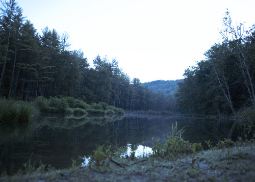 henrybusby:  Dawn at Ashokan Phoot Camp, 2012