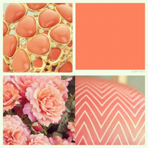 pearlswhiskeyandfratboys:  Day 10- Your Favorite Color…coral! (Taken with Instagram)