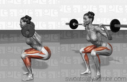 The muscles you use when you squat with proper form.