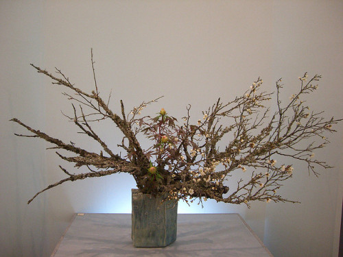 Japanese flower arrangement 9, Ikebana: いけばな by Conveyor belt sushi on Flickr.Japanese flower arrangement