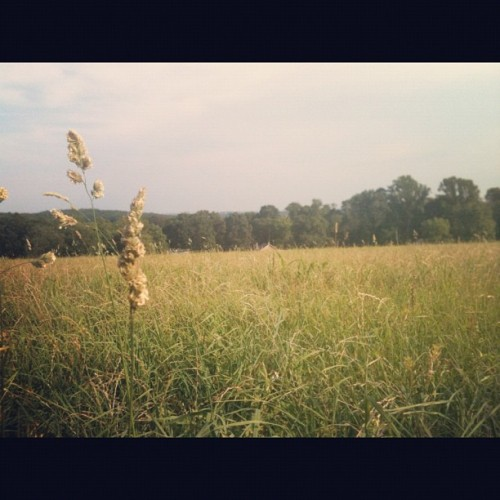 Amish country yo (Taken with Instagram)
