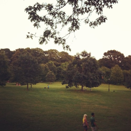 Prospect Park, Brooklyn. A couple of weeks ago.
