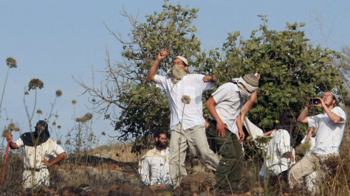 "Report: Violence Against West Bank Palestinians Is Up Farming is the mainstay of the Palestinian communities around the West Bank village of Yanoun. Animals graze the land, and Palestinians make their living by harvesting citrus fruits and olives. Last Saturday, Palestinians say, a group of Jewish settlers killed some of the sheep belonging to the Bani Jabr family. Palestinians say its part of a regular pattern of harassment in the area by settlers. Ibrahim Bani Jabr, who received a cut across his right eye that needed 12 stitches, alleges that Israeli soldiers hit him with a rifle butt to the head when he tried to stop the slaughter of his sheep on land that belongs to his family. Four other Palestinians were injured. The Palestinians say not only did the army beat the villagers, but they also allowed the settlers to attack them. Both the settlers and the army deny the allegations, saying the Palestinians were the aggressors and the army acted to defuse the clashes. Settler Attacks On Palestinians Overall, violence between Israelis and Palestinians has been at relatively low levels the past couple of years. But violence by Jewish settlers living in the occupied West Bank has increased dramatically, according to several United Nations agencies, as well as Israeli and Palestinian groups that monitor the violence. A report released by these groups this week says settler attacks on Palestinians have increased by 150 percent in the past three years. More than 150 attacks have been reported in the first half of this year. There are more than 100 Israeli settlements in the West Bank where more than 300,000 Jewish settlers live. The international community views them as illegal under international law. However, every Israeli government has permitted settlement building since Israel took the West Bank in the 1967 Mideast War. The current Israeli prime minister, Benjamin Netenyahu, has been a particularly strong proponent of settlement building. According to the new report, that growing population is one of the reasons there is a surge in violent confrontations between Israelis and Palestinians in the West Bank. The report says militant settlers are using violence as a tool in their campaign to take over more territory. ""Violence is a means of displacing Palestinians and expanding the settlements in a very explicit way,"" says Jessica Montell, who heads the Israeli human rights group B'tselem. Pictured: Jewish settlers in the West Bank throw stones during clashes with Palestinians near the city of Nablus on May 19. A new report says violence by settlers directed at West Bank Palestinians is up sharply over the past three years. Jaafar Ashtiyeh/AFP/Getty Images"