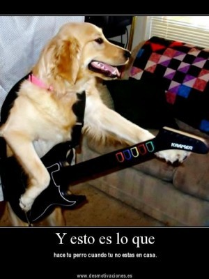 si que padre guitar hero canino LoL