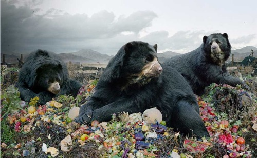 uncertaintimes:  Simen Johan, Untitled #153, 2010