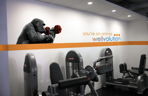 Created for Blue Shield of CA's 4,800 employees, in 10 Fitness Center locations throughout the state. (2012).