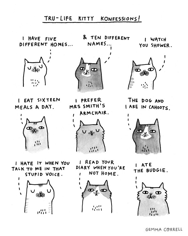 laughingsquid:  Tru-Life Kitty Konfessions!
