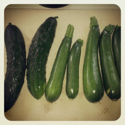 sssoapco:  Yesterdays harvest #gardening #garden #veggies (Taken with Instagram)